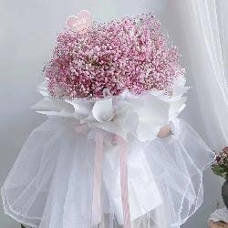 一大扎粉色满天星,你就只属于我
