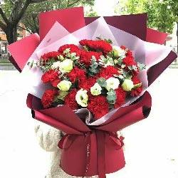 20朵红色康乃馨,佳节喜气扬