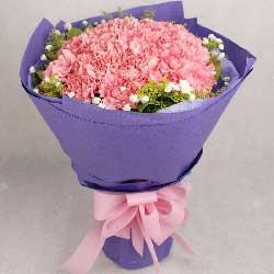22朵粉色康乃馨,生活幸福