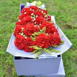 19朵红色康乃馨礼盒,朵朵鲜花进梦里