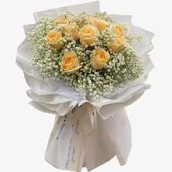 11朵香槟玫瑰,一起舞动爱情之歌