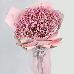 一大扎粉色满天星,爱情甜蜜