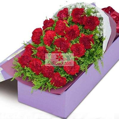 19朵红色康乃馨礼盒,感恩有您
