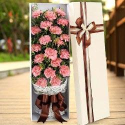 19朵粉色康乃馨,祝福长长久久