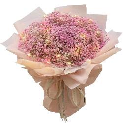 粉色满天星一大扎,全部给你我的世界
