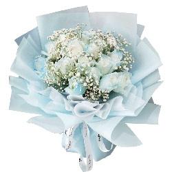 19朵白色碎冰蓝玫瑰,一起幸福的生活