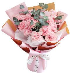 16朵粉色康乃馨,幸福健康长寿