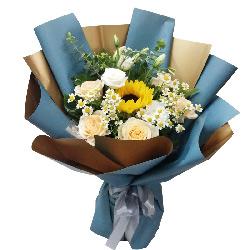 9朵香槟玫瑰向日葵,快乐和向往的地方
