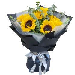 6朵向日葵,幸福安康