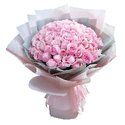 99朵戴安娜粉玫瑰,无尽的爱