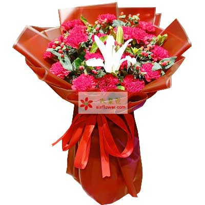16朵红色康乃馨百合,天天幸福
