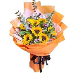 9朵向日葵,开心快乐心更圆