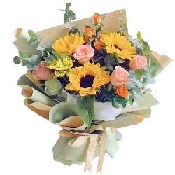3朵向日葵,6朵戴安娜粉玫瑰,阳光灿烂每一天