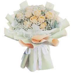 11朵香槟玫瑰,真心真意爱你一生