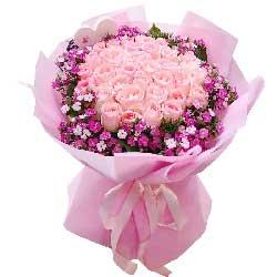 33朵戴安娜粉玫瑰,我懂你
