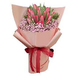 19朵红色郁金香,祝你快乐无忧愁