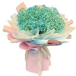 一大扎蓝色满天星,思念与祝福传送给你