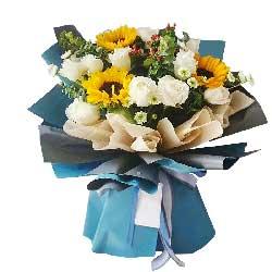 11朵白玫瑰,3朵向日葵,快乐幸福恒星