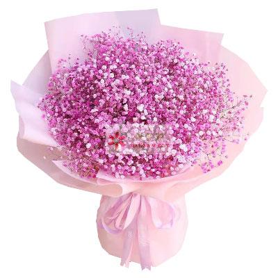 粉色满天星一大扎,一生来守侯的爱…