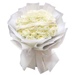 33朵白玫瑰,你是我的真爱