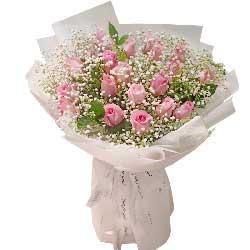 20朵戴安娜粉玫瑰,我的生活不能没有你