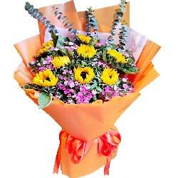 8朵向日葵,愿你特别快乐