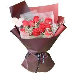 11朵红玫瑰,让我一辈子照顾你