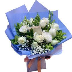 10朵白玫瑰,我爱你宝贝