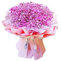 粉色满天星一大扎,深深的爱恋