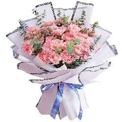 19朵粉色康乃馨,快乐健步飞跃