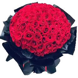 99朵红玫瑰,有你我的世界一片灿烂