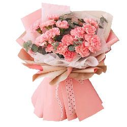 20朵粉色康乃馨,天天享安康