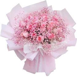 22朵戴安娜粉玫瑰,共度甜蜜好时光