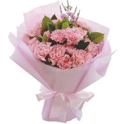 20朵粉色康乃馨,世界因为有你而更加美好
