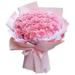 33朵粉色康乃馨,一束花一寸心