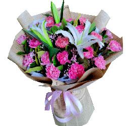 18朵粉色康乃馨,快乐度过每一天