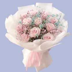 11朵粉色佳人玫瑰,我愿和你在一起