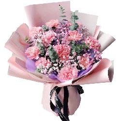 11朵粉色康乃馨,生活圆圆满满