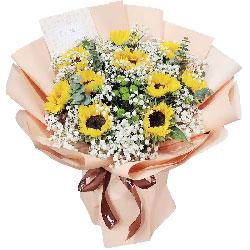 10朵向日葵,炽热的爱