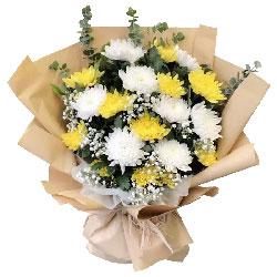 17朵菊花,愿你天堂一路快乐