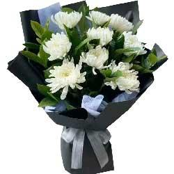 9朵白色菊花,告慰你的殷殷期待