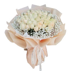 33朵香槟玫瑰,深深的爱恋