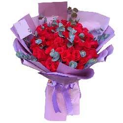 66朵红玫瑰,吻你一生一世