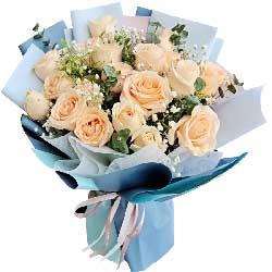 19朵香槟玫瑰,拥抱浪漫的未来