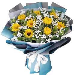 9朵向日葵,幸幸福福