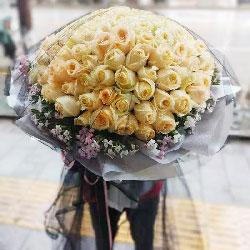 99朵香槟玫瑰,一辈子忘不了你
