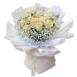 11朵香槟玫瑰满天星,心里有你