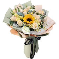 16朵香槟玫瑰,1朵向日葵,前景光明