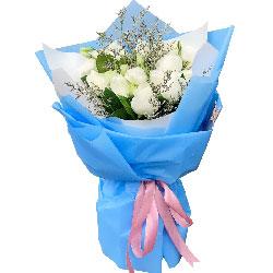 11朵白玫瑰,3朵桔梗花,美妙爱情