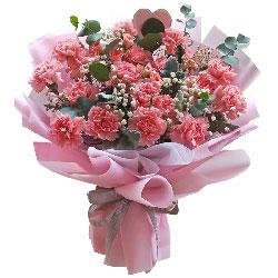 19朵粉色康乃馨,幸福安康